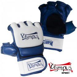 Γάντια MMA AERO-TEC Προπόνησης Δερμα + PU - Olympus