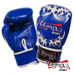 Boxing Gloves Olympus by RAJA Genuine Leather TATTOO - Blue