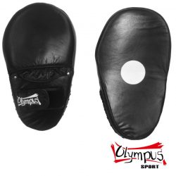 Focus Mitt Oval Boxing Leather Pair