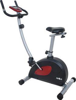 Ποδήλατο όρθιο KH-695 44216