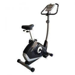 VIKING B-6165 Ποδήλατο Γυμναστικής
