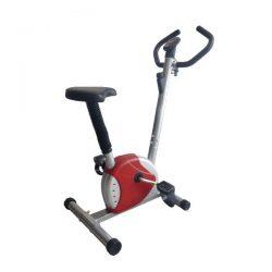 Ποδήλατο γυμναστικής Viking B1