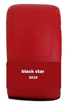 Γάντια Σάκου Κόκκινο Alpine Σειρα Black Star
