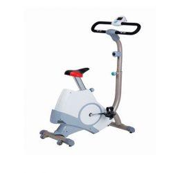 Ποδήλατο Γυμναστικής Viking SP-441